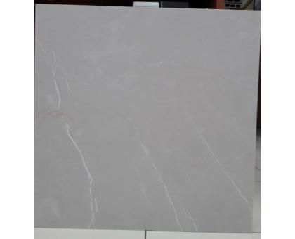 Керамогранит серый мрамор SH6021 600x600x9,5